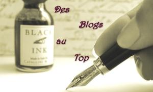des blogs au top